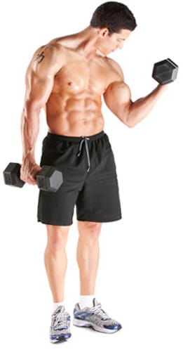 natural-steroid-sources-for-bodybuilding